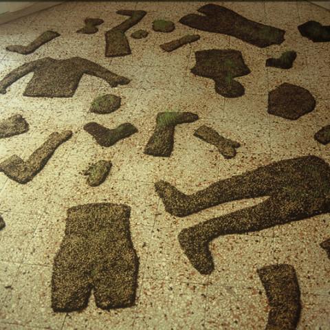Au pays des hommes-fleuve - Campo di battaglia, 2002, terriccio e semi di prato, acqua, installazione in situ ,dimensioni variabili