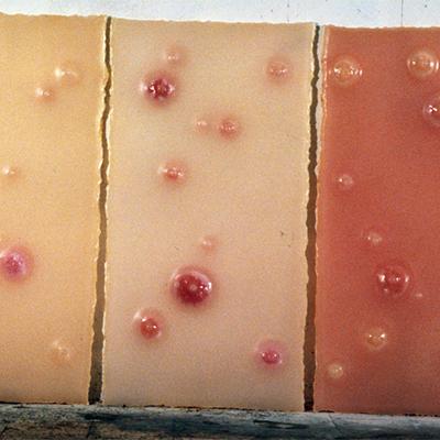 À mon seul desir - Jeunes filles, 1996. Lastre di paraffina colorata (60x100 cm cad.).