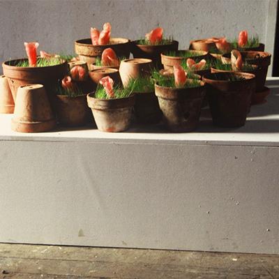 À mon seul desir - Impudiques, 1992. Cera dentale, terriccio, erba, acqua in vasi di terracotta. Installazione in situ.