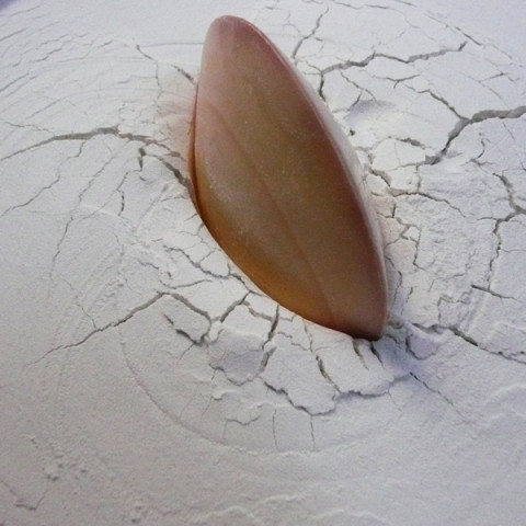 Sirene - Doux piège, 1997. Conchiglia, farina e borotalco, bacinella di alluminio (35x25 cm).
