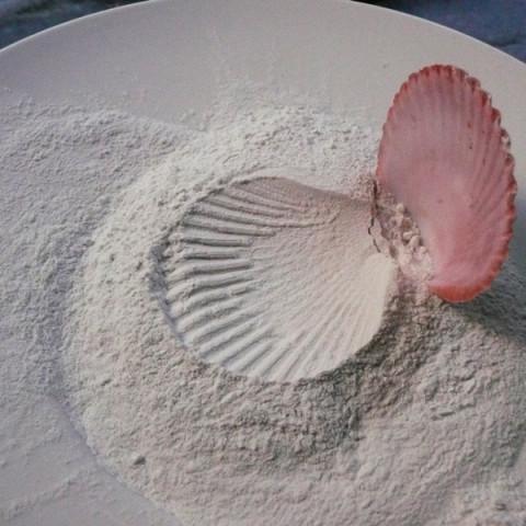 Sirene - Doux piège, 1997. Conchiglia, farina e borotalco, piatto di ceramica.